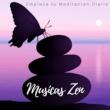 Yoga Para Embarazadas Musicas Zen