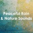 Zen Music Garden Gentle Rain Showers