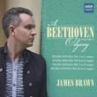 James Brawn Piano Sonata No. 5 in C Minor, Op. 10, No. 1: I. Allegro molto e con brio