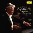 ウィーン・フィルハーモニー管弦楽団/ヘルベルト・フォン・カラヤン 交響曲 第9番 ホ短調 作品95 《新世界より》: 第4楽章