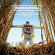 Rudimental These Days (feat. Jess Glynne, Macklemore & Dan Caplen) [Remix EP]