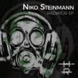 Niko Steinmann Radiator