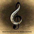 Konzentration Musikexperten Piano Sonata No. 8 in A Minor, K. 310: I. Allegro maestoso