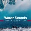 Nature Sounds Artists