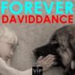 Daviddance Forever
