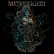 Meshuggah Clockworks