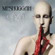 Meshuggah Bleed (Video)