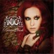 Indica Precious Dark (Video)