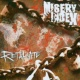 Misery Index The Great Depression (Video)