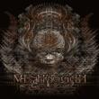 Meshuggah I Am Colossus