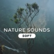 Nature Sound Collection Spa Treatments
