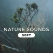 Nature Sound Collection Calm of Mind