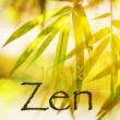 ZeN Zen - Sons de la nature et sonorité ancestrale