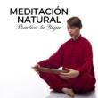 Zen Powder Meditación Natural