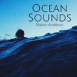 Ocean Sounds Collection A Reflection of Your Mind