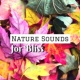 Inner Bliss Club Nature Sounds for Bliss - Sound Therapy for Mind Power, Music for Deep Relaxation