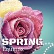 Spring Juice Spring Equinox