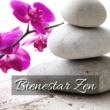 Zen Zazen Bienestar Zen