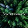 Gewitter Naturgeräusche Entspannungsmusik Beste Naturgeräusche