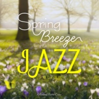 Relaxing Piano Crew Springtime Choices