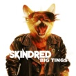 Skindred Big Tings (Array)
