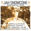 Wayne Wonder Jah Snowcone - Reggae Dancehall Nature