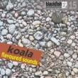 Koala Soir Du Jour
