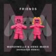 Marshmello & Anne-Marie FRIENDS (Borgeous Remix)