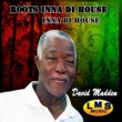 David Madden Inna Di House