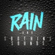 Rain Sounds & White Noise