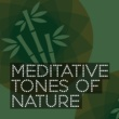 Meditate to Sounds of Nature