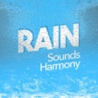 Rain Sounds - Sleep Moods Wet Day
