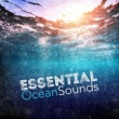 Ocean Sounds Collection