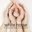 White Noise Baby White Noise: Fan Revolutions