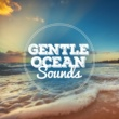 Ocean Sounds Collection Gentle Ocean Sounds