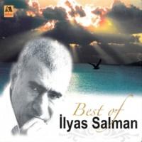İlyas Salman Anama