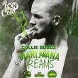 Collie Buddz Marijuana Dreams
