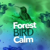 Forest Sounds Relaxing Spa Music Singing Birds Riverbank