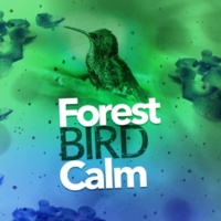 Forest Sounds Relaxing Spa Music Singing Birds Chatter Above