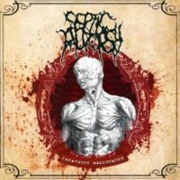 Septic Autopsy Decomposition in Immersed Bodies