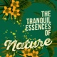 Nature Moods The Tranquil Essences of Nature