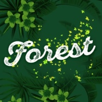 Forest Soundscapes Lakeland Birdlife