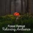 Forest Sounds Forest Retreat: Relaxing Ambience
