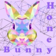 Honey Bunny Reloading