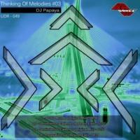 DJ Papaya Thinking Of Melodies #03