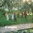 D'Angelo D'angelo