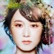 コアラモード. 花鳥風月 (Special Edition)
