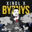 Xindl X Byznys