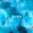 James Broken by the Hurt