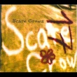 Scare Crows